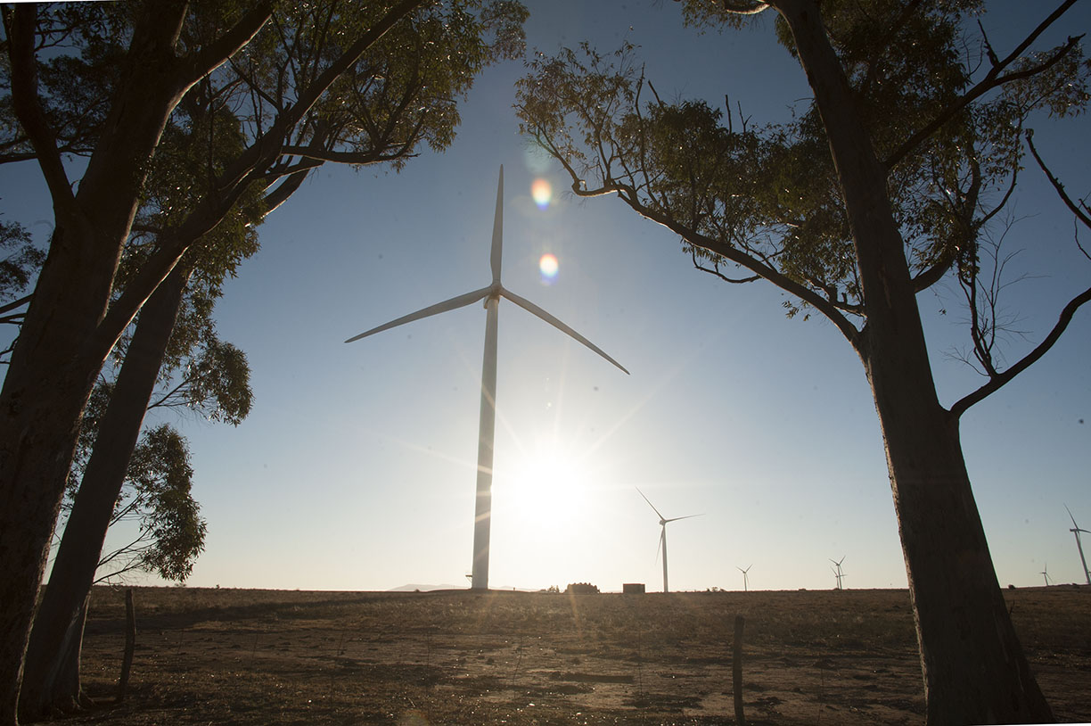 the cookhouse wind farm
