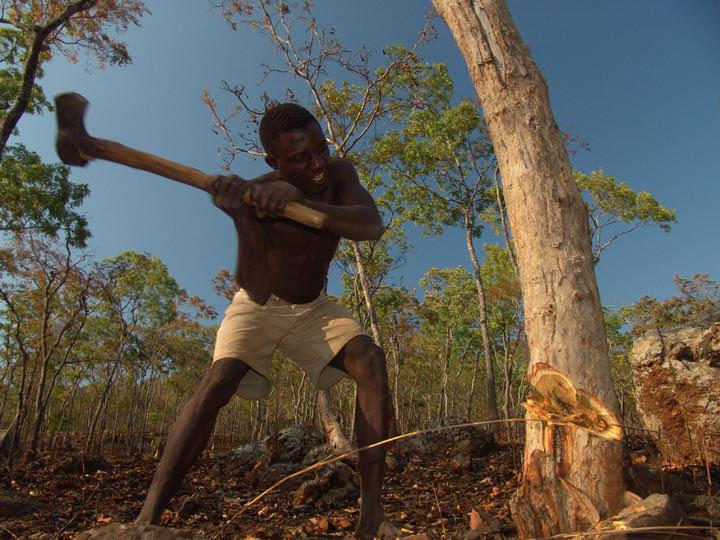 Malawi Wood Cutters